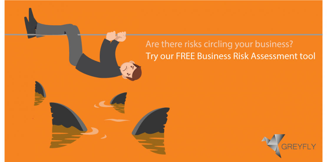 Are There Risks Circling Your Business? Try Our FREE Business Risk  Assessment Tool