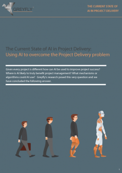 Greyfly Project Delivery Assessment Tool