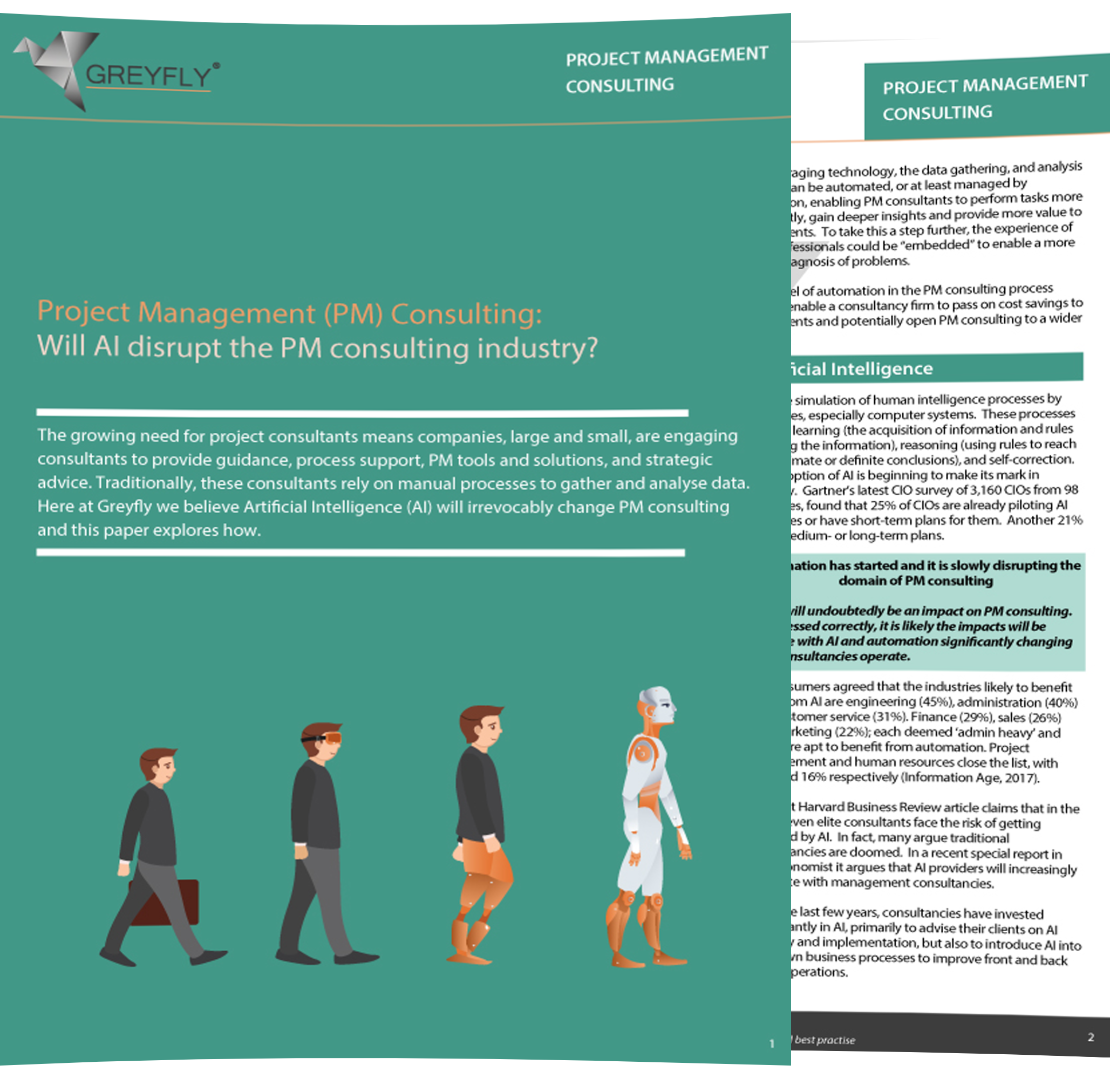 AI Consulting Brochure